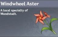 How To Get Windwheel Aster In Genshin Impact